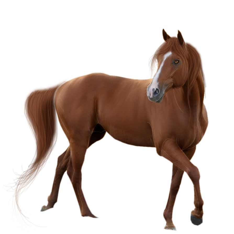 Horse Pre-Cut #4 by Satrumm