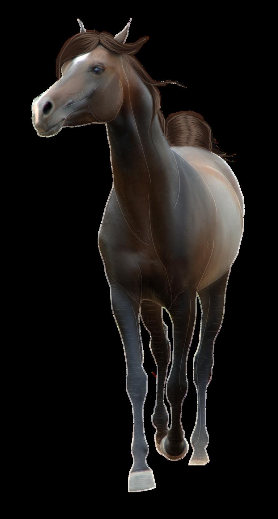 Horse Pre-Cut #5 by Sa...