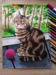 Cat With A Yarn by LaertanaArt