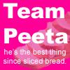 Team Peeta Sliced Icon by bodiechan