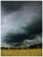 myrsky by s3r4x