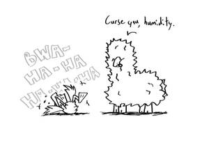 Fluff + Feathers: Humid Humor