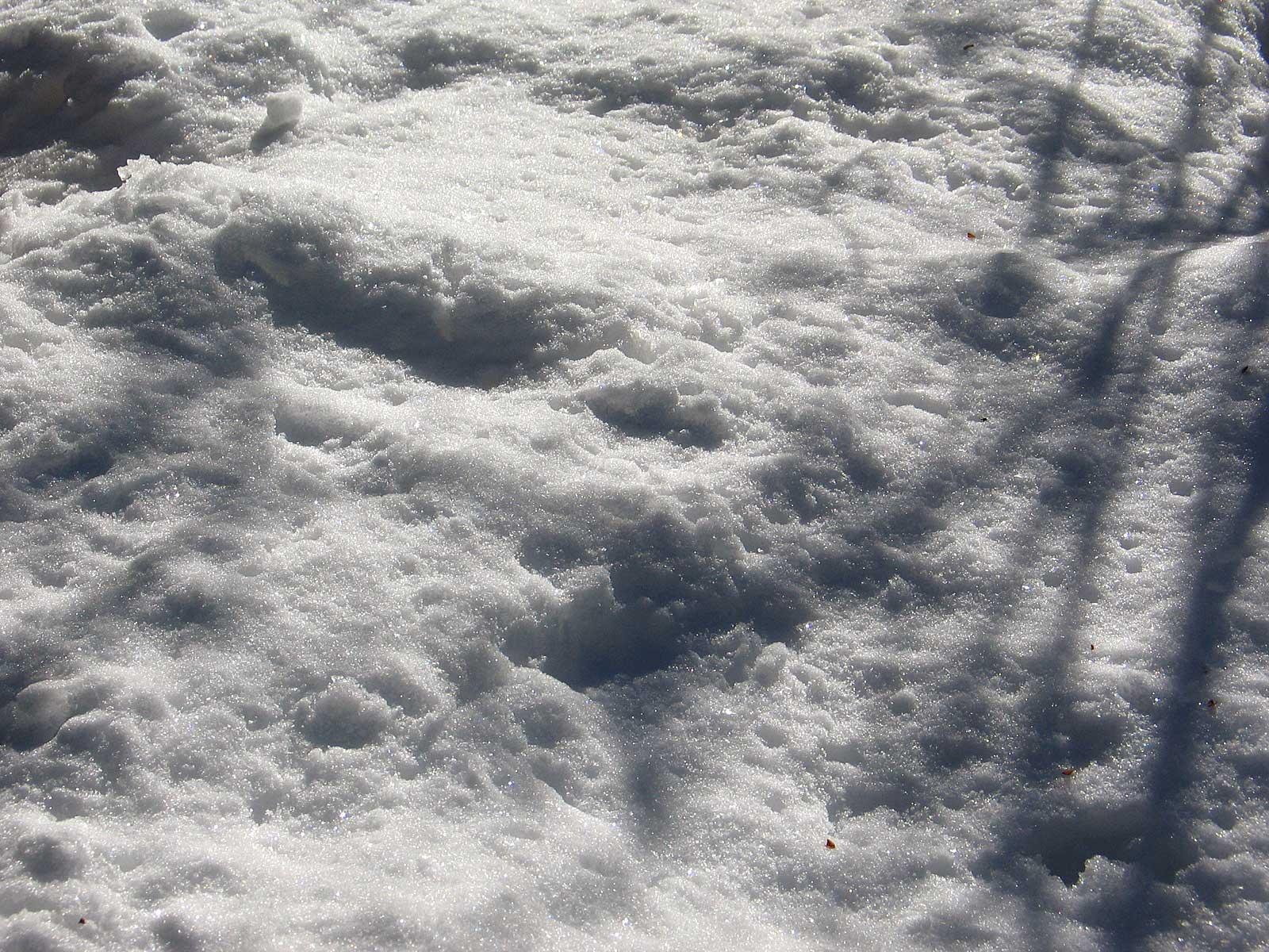 AthenaStock: Snow Patch Shadow