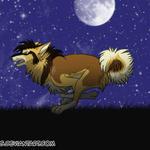 Run, Aki, Run - Animation by Tavaris