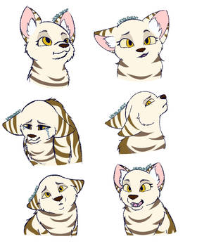 MouseKit Expressions