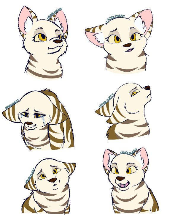 MouseKit Expressions by UkyoLovest