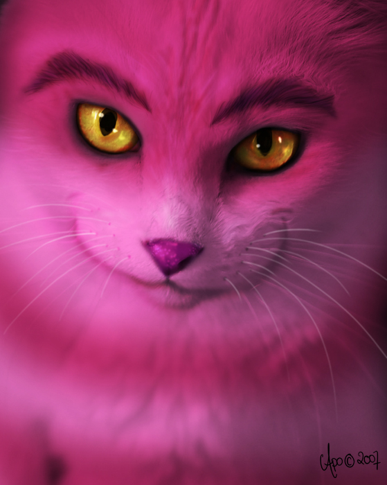 Cheshire Cat by Apple In