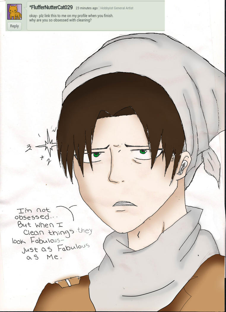 why do you like cleaning so much by ask-levi-SNK
