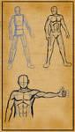 Anatomy reference: Men