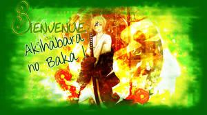 Banniere pour AnB : Natsume by Elya-Tagada