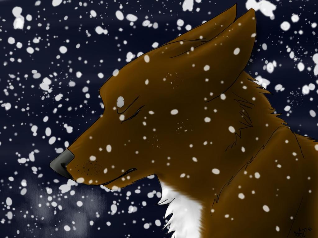 Snow by AlphaHawk98