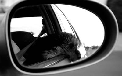 Through the Mirror by kreiebaby