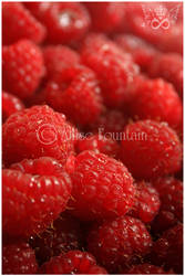 Antioxidant by gogirlanime
