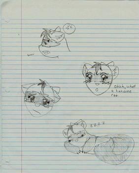 Ferret Doodles