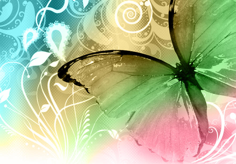 colorful butterfly by reven94