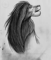 Simba by Legendary-Darkness