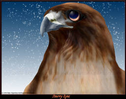 Starry Eyes by Legendary-Darkness