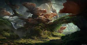 Fungal Overgrowth