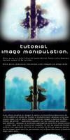 Imagemanipulation