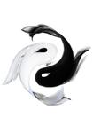 LongBoard Ying Yang Design