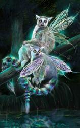 Ringtail Fairies