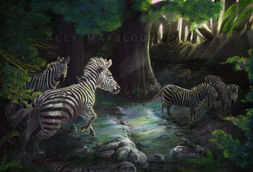 Forest of the Zebras