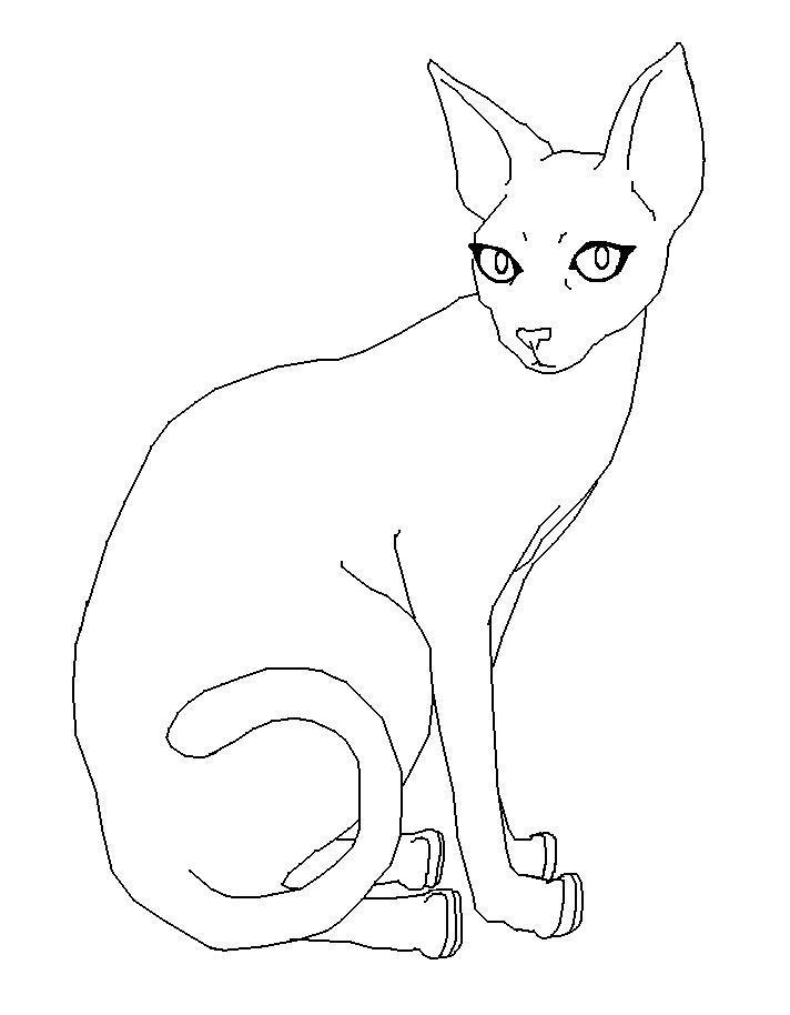 Simple Cat Lineart : Simple cat sphynx lineart by reokasileny on deviantart