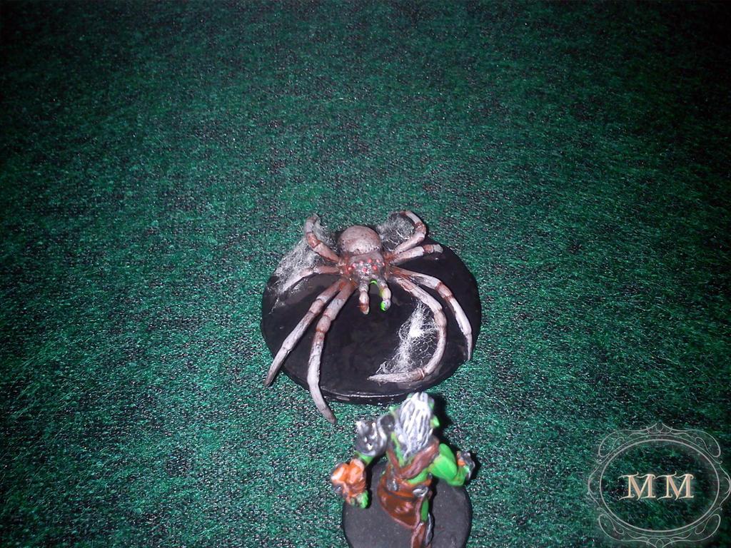 Kici, kici, taś taś.. jak tak, do pająka..?