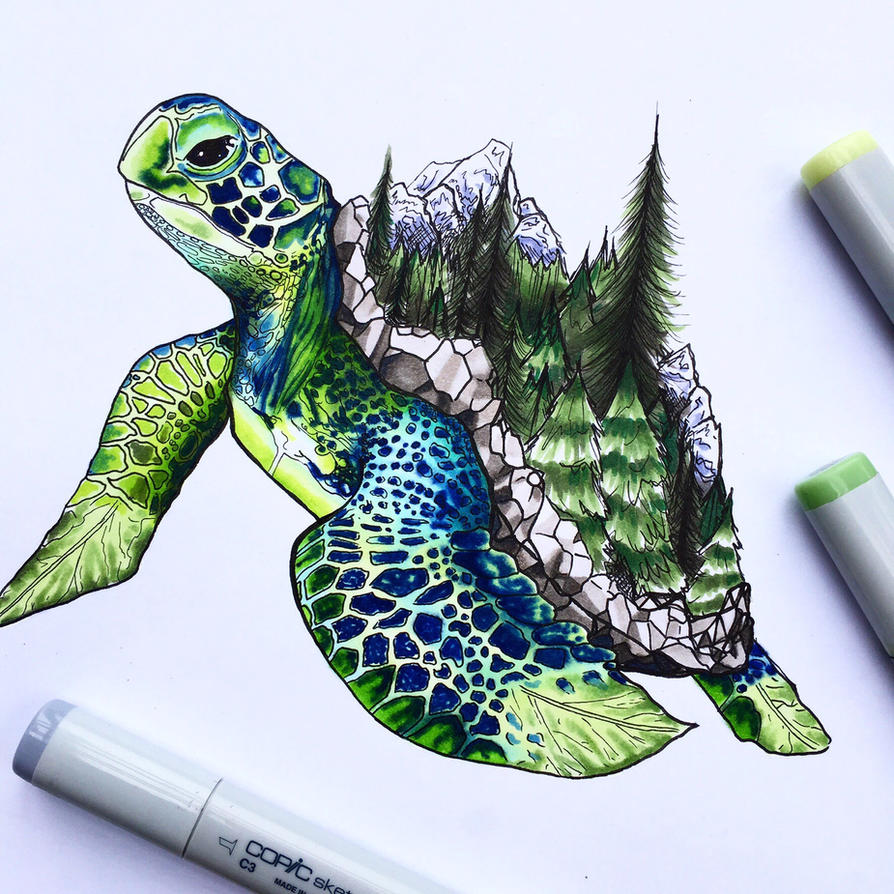 Forest Turtle by hyaciinth