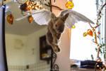 Flying rabbit- wall ornament.