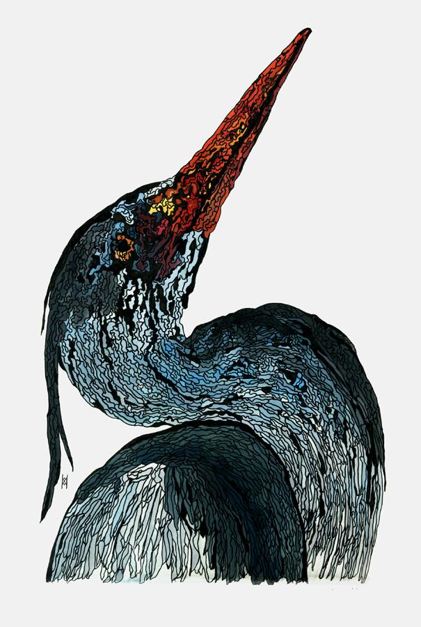 Blue Heron by MSNDVK