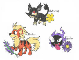 Buttercup, Heather, and Aster