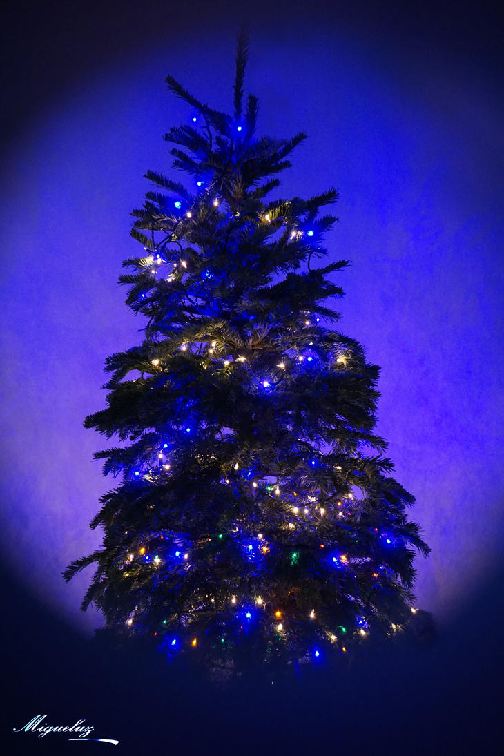christmas tree by migueluz117