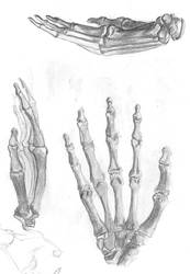 Hands Study_2 by RaczTamas