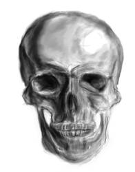 Skull Front by RaczTamas
