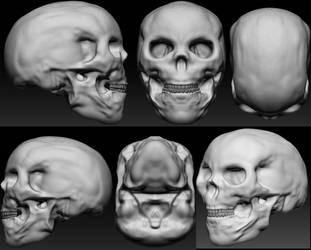 Skull by RaczTamas