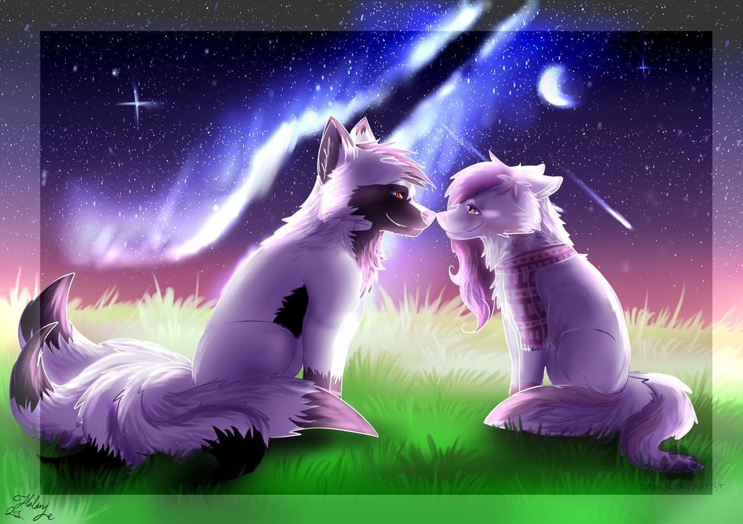 Under The Stars By Darkwolfartist by TaruKitsune