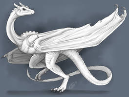White Wyvern by RaptorBarry