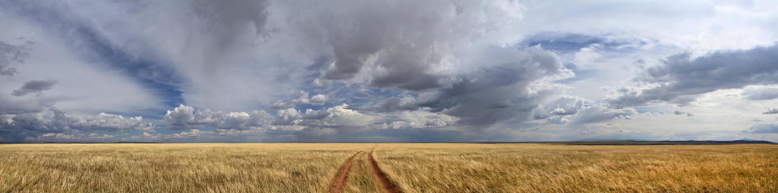 endless road by eDDie-TK