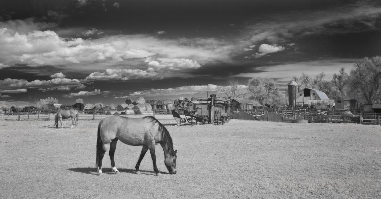 the johnson ranch by eDDie-TK