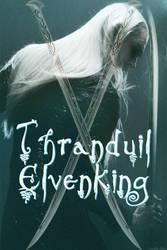 Thranduil Swordsman