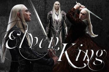 Elven King Armor