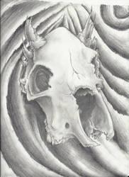 bull skull study