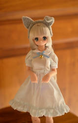Yune - Azone Pure Neemo Little Wolf Koron by J-e-n-K-a-t