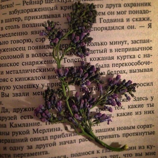 Image by CozyWorld