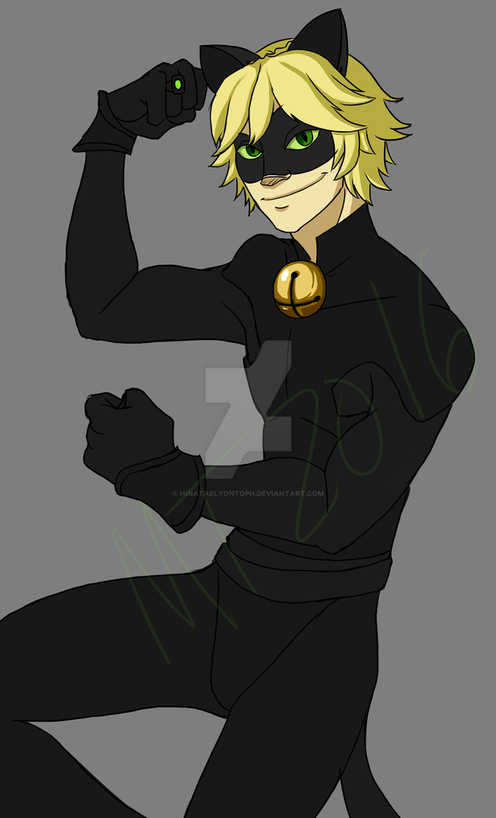 Cat Noir And Others And Ladybug Dress Ups Games