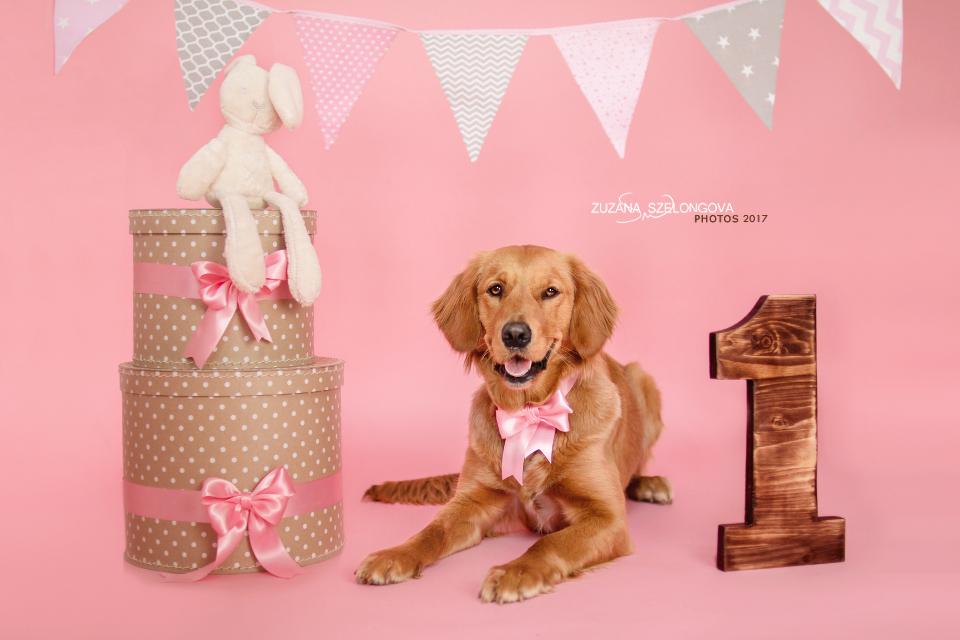 Happy Birthday Bonnie! by Suzie18