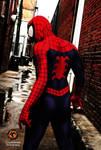 Spiderman - Alley 2