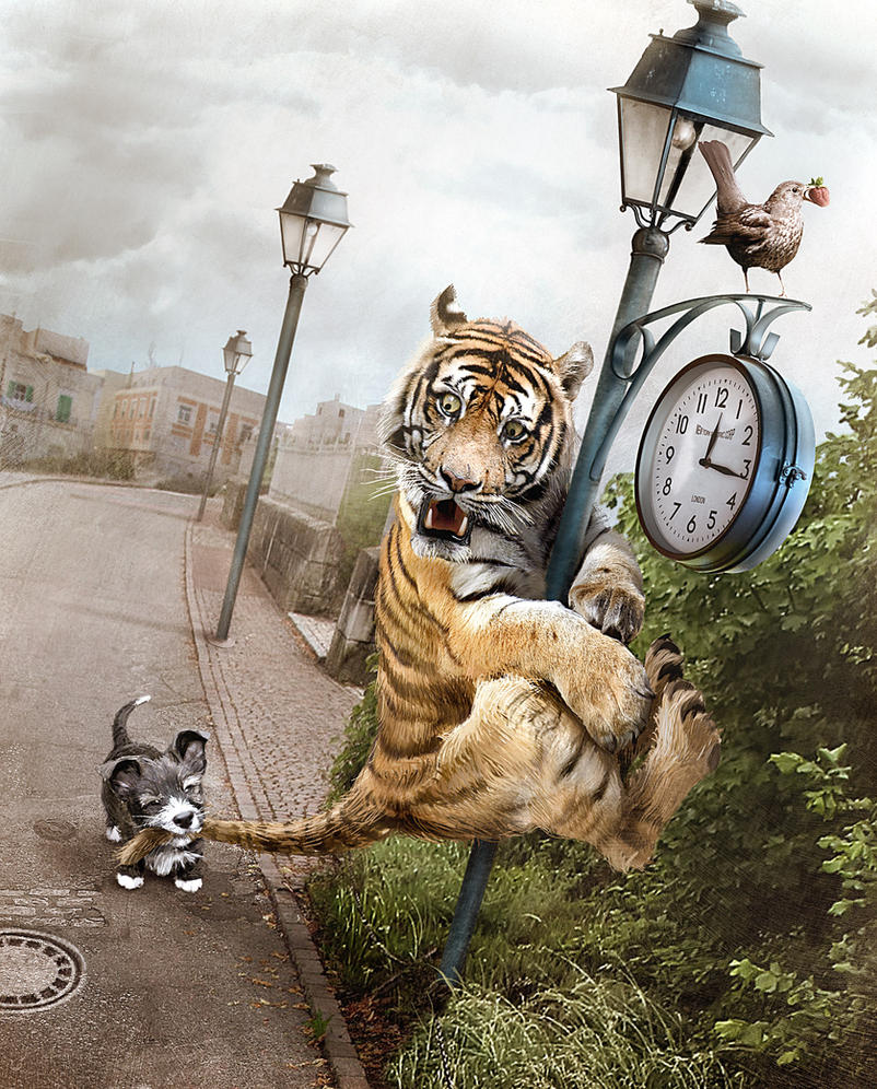 Max - The Brave Cat Hunter by razislav