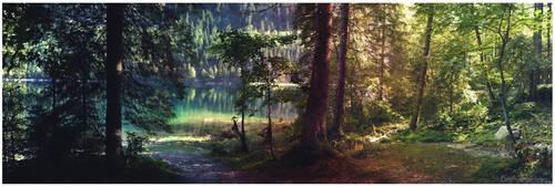 the woodlanddays XXVI by Bodhisattvacary